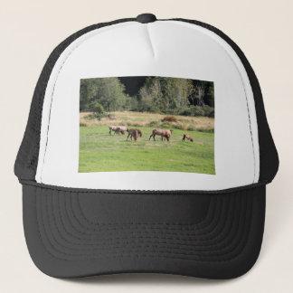 Bull Elk & Harem Trucker Hat