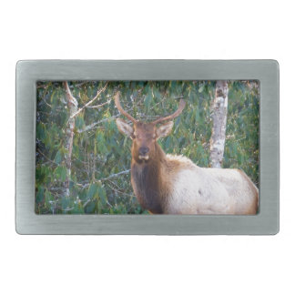 Bull Elk in Rhododendrons Belt Buckle