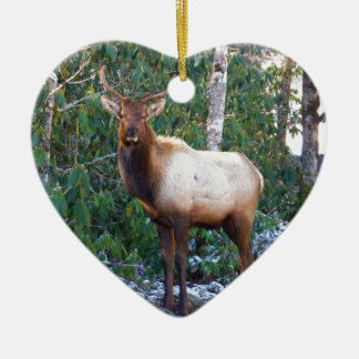 Bull Elk in Rhododendrons Ceramic Ornament