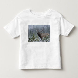 Bull Elk in snow calling, bugling, Yellowstone T Shirt