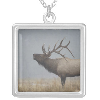 Bull Elk in snow storm calling, bugling, Silver Plated Necklace