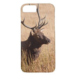 Bull Elk iPhone 7 Case