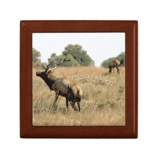 Bull Elk Keepsake Boxes