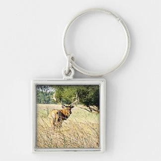 Bull Elk Keychain