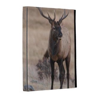 Bull Elk or Wapiti iPad Folio Cover