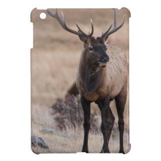 Bull Elk or Wapiti iPad Mini Cover