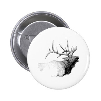 Bull Elk Pinback Button