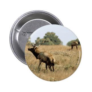 Bull Elk Pinback Buttons