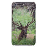 Bull Elk Resting In Alpine Meadow With Antlers iPod Touch Cover