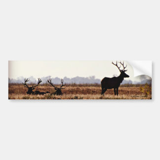 Bull Elk Silhouette Bumper Sticker