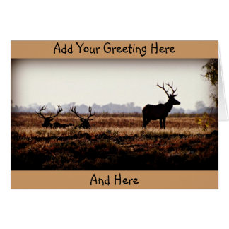 Bull Elk Silhouette Card