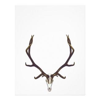 Bull elk skull color letterhead