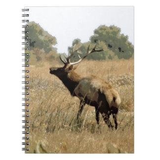 Bull Elk Spiral Note Books
