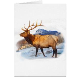 bull elk t idea.pdf greeting card