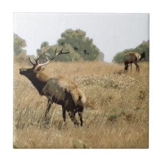 Bull Elk Tile