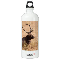 Bull Elk Water Bottle