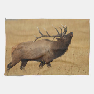 Bull Elk with Head Back Kitchen Towel