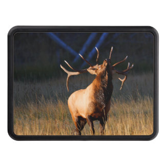 Bull Elk with Head Back Tow Hitch Cover