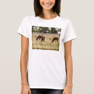 Bull Elk Womans T-shirt