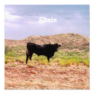Bull en España Comunicados Personales