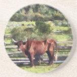 Bull en pasto posavasos cerveza