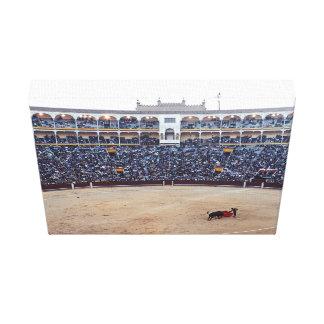 Bull Fight Arena Canvas Print