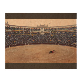 Bull Fight Arena Cork Paper Prints