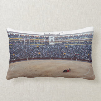 Bull Fight Arena Pillow