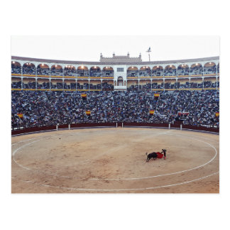 Bull Fight Arena Postcard