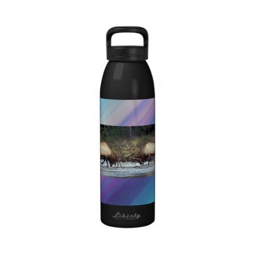 Bull Fight Water Bottle