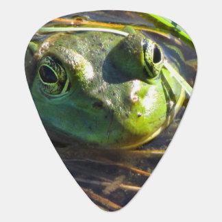 Bull Frog Guitar Pick