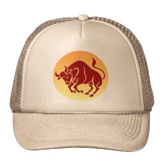 Bull Hat