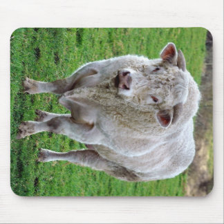 Bull in field mouse pad
