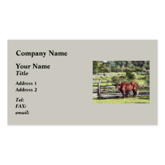 Bull in Pasture Business Card