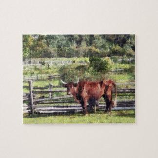 Bull in Pasture Puzzle
