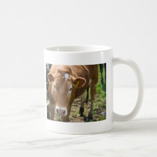 Bull joven taza de café