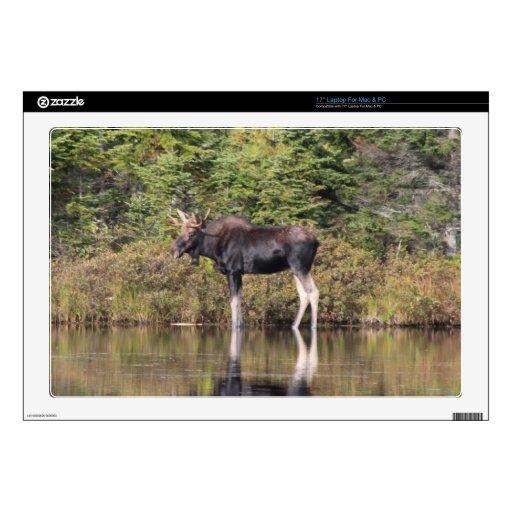 "Bull Moose 17"" Laptop Skin"