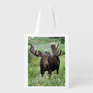 Bull moose Alces alces) in wildflowers, Grocery Bag
