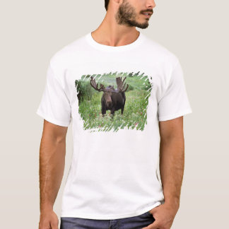 Bull moose Alces alces) in wildflowers, T-Shirt