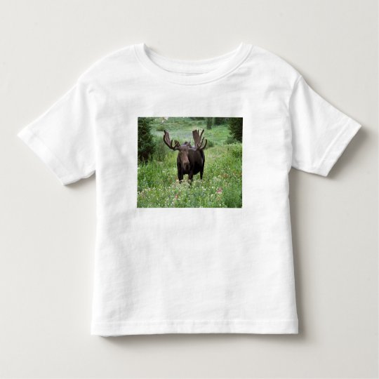 Bull moose Alces alces) in wildflowers, Toddler T-shirt