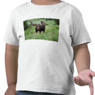 Bull moose Alces alces in wildflowers Tshirt