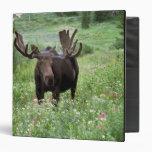 Bull moose Alces alces) in wildflowers, Vinyl Binder