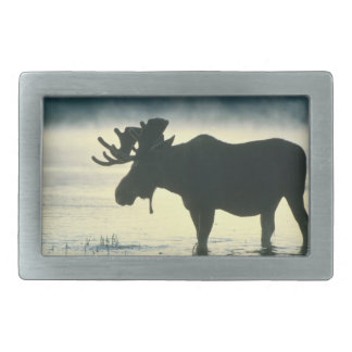 Bull Moose - American Mammal Collection Belt Buckle