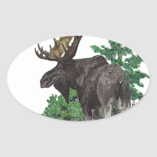 Bull moose art oval sticker