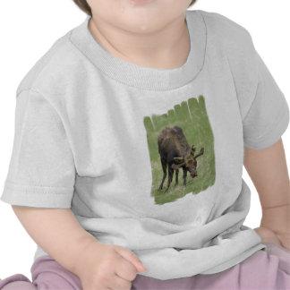 Bull Moose Baby T-Shirt