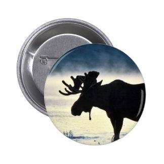 Bull moose button