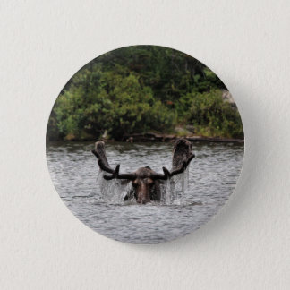 Bull Moose Button