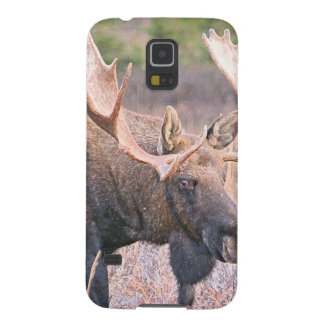BULL MOOSE GALAXY S5 COVER