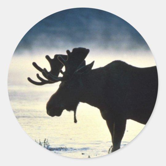 Bull moose classic round sticker