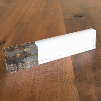 Bull Moose Desk Name Plate